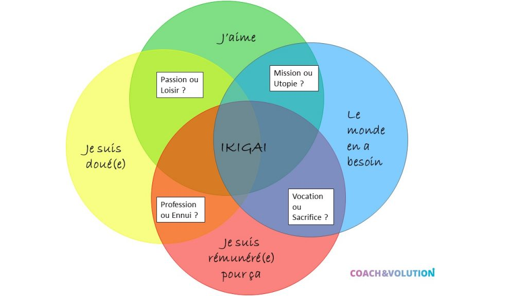Ikigai Coach&volution